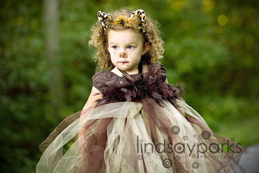 lion1  sc 1 st  Lindsay Parks Photography & Lindsay Parks Photography | Cutest Costumeu2013Iu0027m not u201clion!u201d Harford ...