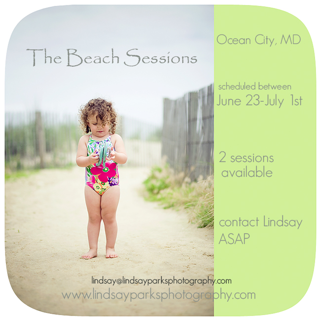 beach-sessions1
